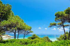 Ekies All Senses Resort - Halkidiki, Hellas Thessaloniki, Greece Travel, Beautiful Beaches, To Go, Earth, Island, Explore, Adventure, World