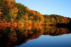 Cedar Rapids - Cedar River