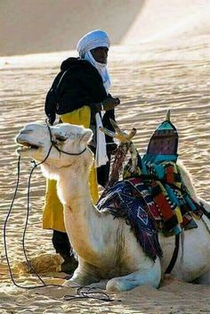 Hump Day Camel, Desert Places, The Little Prince, African Culture, North Africa, People Around The World, Belle Photo, Beautiful Landscapes, Character Design