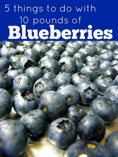 5 things to Do With 10 Pounds of Blueberries. Click through to see instructions on freezing, saucing and making vinegar | PreparednessMama