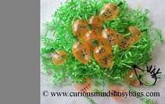 EASTER Busy Bag - Carrot Number Match
