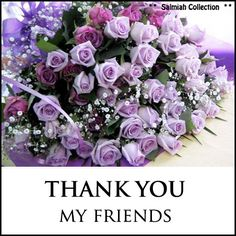 Salmiah Collection: Thank You Quote 7: For Friends