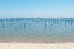 Bonnes adresses du Cap Ferret - Bassin d'Arcachon