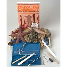 Home Schooling dissection kits