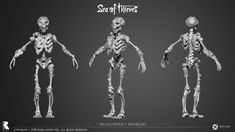 ArtStation - Sea of Thieves – Ivan Yosifov Sea Of Thieves, Zbrush, Art Studios, Style Guides, Creatures, Year 2, Character Ideas, Skeletons, Diorama