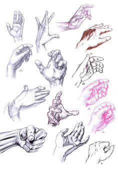 Hände zeichnen TONS of hands drawn in different positions. I feel like doing this would be a great learning experience Drawing Practice, Life Drawing, Figure Drawing, Drawing Sketches, Painting & Drawing, Art Drawings, Sketching, Drawings Of Hands, Drawing Fist