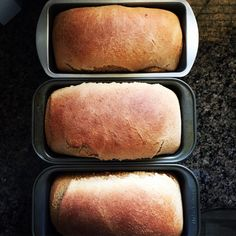 Whole Wheat Bread–Hearty and healthy whole wheat bread made at home. I mak… wholemeal bread – hearty and healthy wholemeal bread from our own production. I make this bread almost weekly at home! The recipe makes 4 loaves and it makes the best toast ever. Wheat Bread Recipe, Bread Recipes, Crockpot Recipes, Quick Bread, How To Make Bread, Bread Making, 100 Whole Wheat Bread, Fluffy Dinner Rolls, Best Toasts