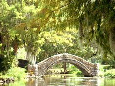 City Park - New Orleans Contains Sculpture Garden, Botanical Garden and NO Museum of Art.