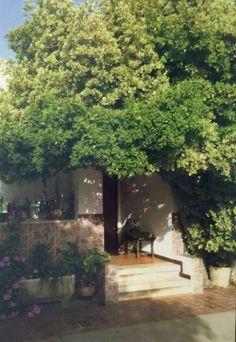 . Reff 118 Se vende finca rustica en sencelles (230.000 �) *2200 m2 ( parcela…