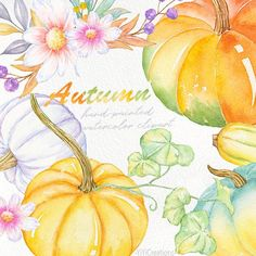 Pumpkin and Floral. Watercolor Cat, Watercolor Leaves, Printable Leaves, Pink Carnations, Peach Flowers, Flower Clipart, Cute Pumpkin, Modern Wedding Invitations, Floral Bouquets