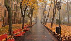 Осень в горсаду Odessa Port, Odessa Beach, Sunny Beach, Autumn Aesthetic, Most Beautiful Cities, Black Sea, Historical Sites, Ukraine, Country Roads