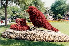 Cypress Gardens - Topiary in Spring by roger4336, via Flickr