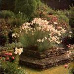 """TLC Home """"Bowered Garden Ideas"""""""