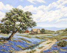 Texas Hill Country in Spring Time