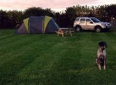 East End Farm Campsite :: Campsite East End Farm Main Street Garton-on-the-Wolds East Yorkshire,