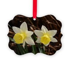 Easter Picture Ornament by KirstiStore - CafePress Picture Ornaments, Photo Christmas Ornaments, Easter Pictures, Ornaments Design, How To Make Ornaments, Red Ribbon, Holiday Decor, Prints, Beautiful