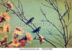 Vintage spring image with swallows and tree  blossom.Textured old paper background with conceptual nature springtime image
