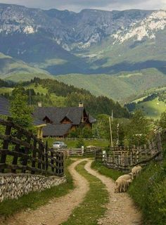How To Find The Best Hotel For Your Trip. Are you headed out on the road and looking for a fabulous hotel room? Places To Travel, Places To See, Beautiful World, Beautiful Places, Country Life, Country Roads, Landscape Photography, Nature Photography, Romania Travel