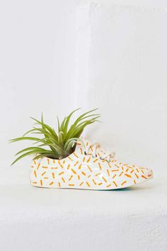 Wyatt Little Dashes Shoe Pot - Gifts + Home