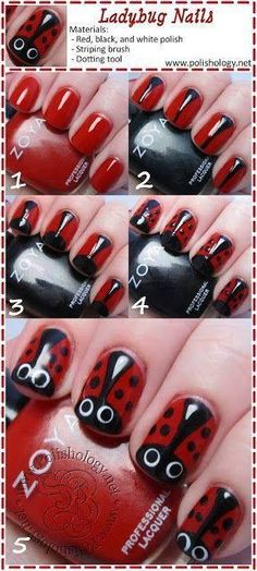 Adorable ladybugs