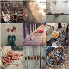 :: autumn mosaic :: | by www.contemplatingtheexquisite.typepad.com