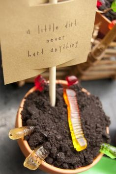cute!! for eco friendly seed planting party!
