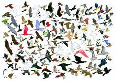 132 Birds Leaving AMNH (Response to Jason Polan) - 20x200
