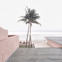 Today we're dreaming of a relaxing vacation by the beach. Where would you like to spend today? The Beach, Pink Beach, Kinfolk Magazine, Belle Photo, Summer Vibes, Summer Grunge, Pink Summer, Summer Beach, Palm Trees