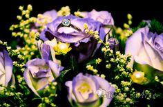 En las fotografías de anillos con arreglos florales siempre se logra una imagen con mucho color.