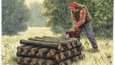 chain saw tips, chain saw, cut firewood, firewood cutting, easy firewood, chainsaw bind