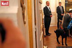Emmanuel et Brigitte Macron ont adopté un chien, baptisé Nemo Labrador Noir, Nemo, Emmanuel Macron, Man And Dog, Cats, Week End, Telugu, Spa, Adopt A Dog