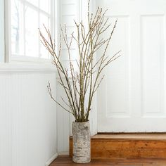 Pussy Willow Branches in EASTER Decorating Wreaths + Blooms at Terrain