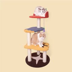 Vegetable Wood Cat Climbing Frame Cat Trees Cheap, Cat Climbing Tree, Cat Gym, Cat Towers, Wood Cat, Cat Scratcher, Pet Clothes, Cat Love, Dog Bowls