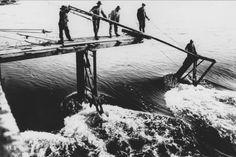 Bauzeit Altes Weserwehr Bremen. Sohlbefestigung im Oberwasser, Pfeiler teilweise fertig. Aufnahme aus dem Jahr 1909.
