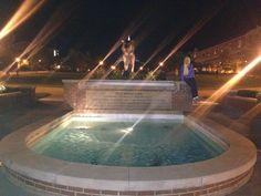 Tiger Plaza :)
