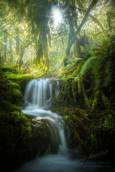 Magical Waterfall on the north side of Hunchback Mountain, Oregon by Gary Randall