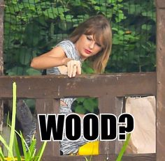 taylor - *wood? really? THIS IS THE INFAMOUS WOOD? OMG. I'VE BEEN A FAN OF YOU, WOOD.*