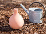 Terracotta Watering System by Growoya