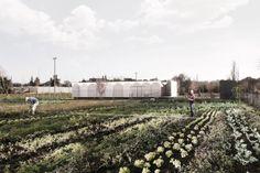 alcolea+tárrago+arquitectos+.+Pasarela+peatonal+y+casetas+de+aperos+en+el+parque+Aranzadi+.+Pamplona++(3).jpg (1600×1067)