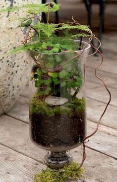 Terrarium de printemps dans un bocal sur pied