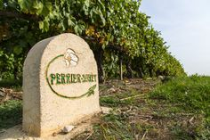 The Perrier-Jouët family has owned vines in Champagne since the early 18th century. #perrierjouet Please Drink Responsibly