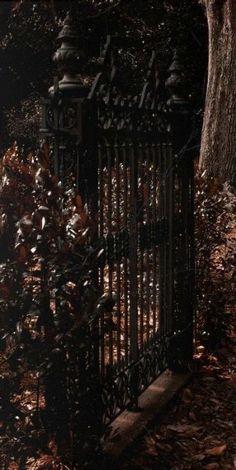 October Country, Dark Autumn, Autumn Forest, Midnight Garden, Sombre, Garden Gates, Dark Beauty, Fall Halloween, Samhain Halloween