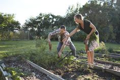 Vegetable gardening is easy, but creating the initial vegetable garden takes some work. Be sure to put some thought into designing your vegetable garden before you start digging. Vegetable Garden Planner, Starting A Vegetable Garden, Vegetable Garden For Beginners, Veg Garden, Vegetable Garden Design, Garden Beds, Vegetable Gardening, Terrace Garden, Organic Gardening