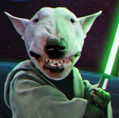 May the Bull Force Be With U                                                                                                                                                                                 More