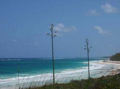 Hatchet Bay Gregory Town, North Eleuthera, Eleuthera The Bahamas