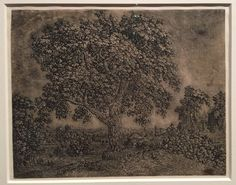 The Large Tree (1628) etching by Hercules Segers The Metropolitan (April 2017)