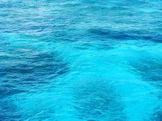 Great Barrier Reef #australia #cairns #greatbarrierreef #tb #to #2010 #oweek #semesterabroad by ulliwell http://ift.tt/1UokkV2