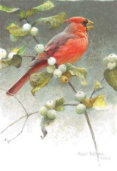 RobertBateman - Cardinal and Snowberries