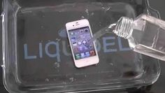 Dropped your phone in the pool or toilet? Here's how you can save it.