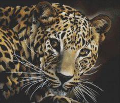 Leopard cross stitch art by April Rafko Spell Bound by GeckoRouge